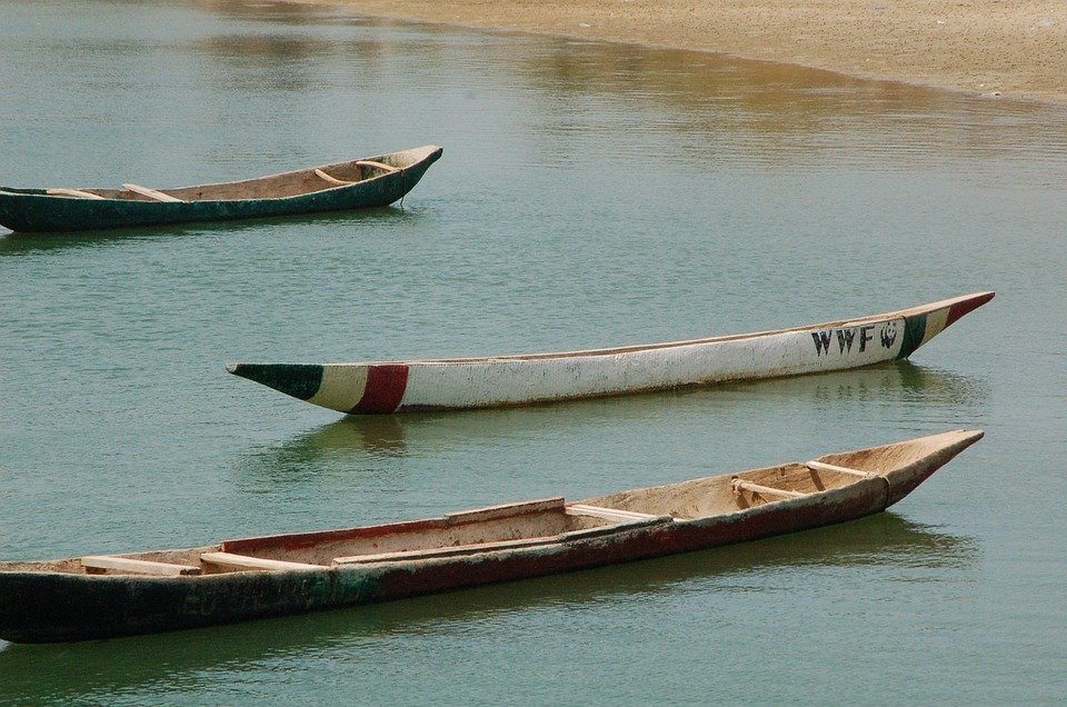3 canoës en bois sur l'eau